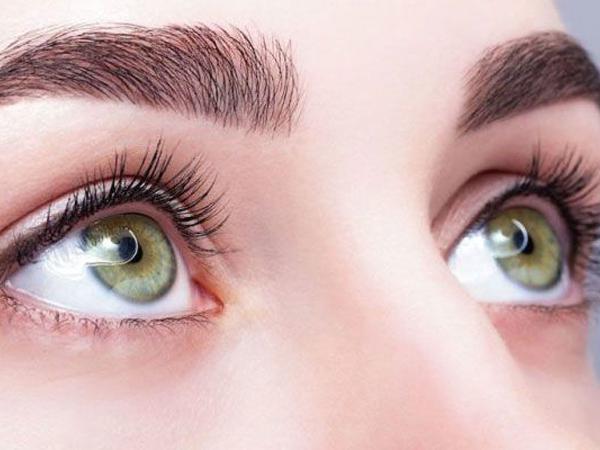 Loài cây nhổ không sạch, phun thuốc sâu không hết lại là thuốc quý để sáng mắt, sạch phổi - 2